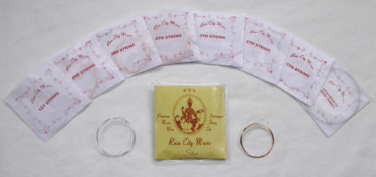 Rain City Music sitar and Indian instrument strings